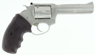 CHARTER ARMS PATHFINDER 22LR SS 4.2